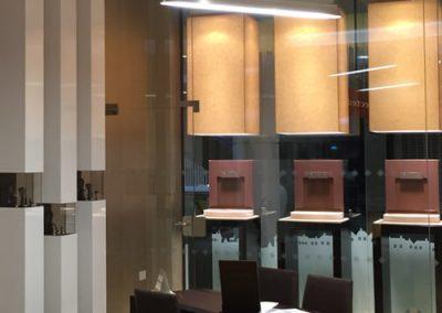 PRAVINS consultation desk & lights